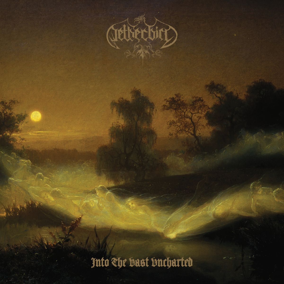 Netherbird Announces A New Album